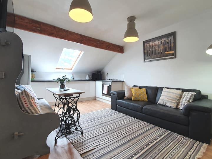 Huge Victorian apt,3 bedrooms up to 14 guest.