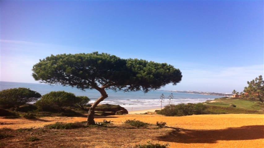 Praia da Falésia V3 é um Paraiso - Várzeas de Quarteira  - House