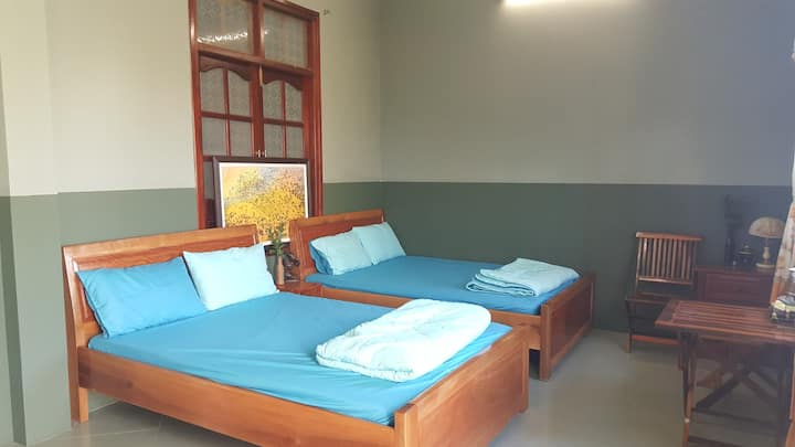Quad Room  (with Balcony) - Yellow Farm Homestay