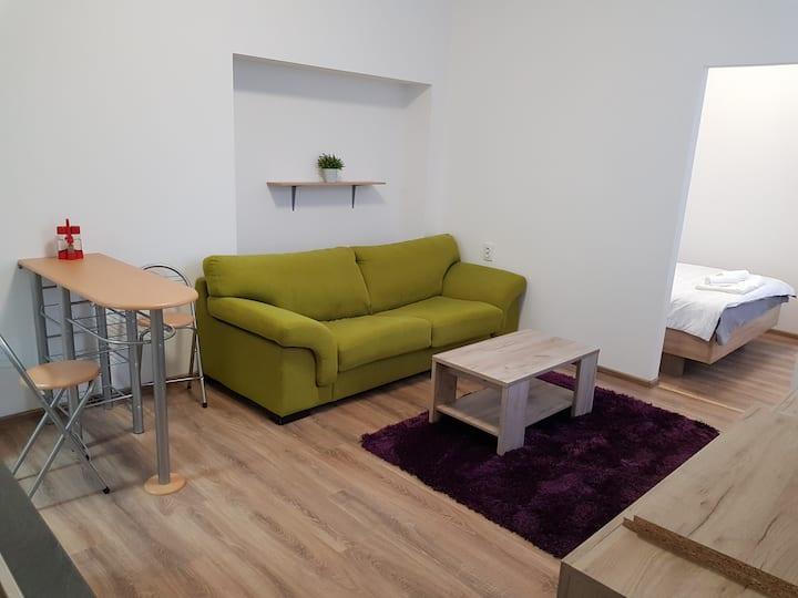 Apartament 15 Central