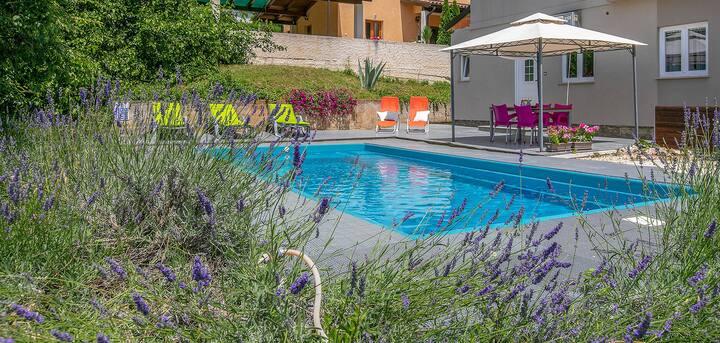 Big apartment with private pool in Ližnjan