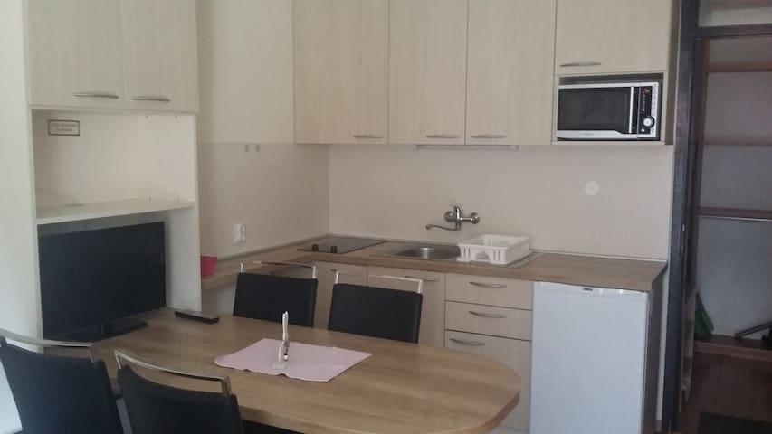 Apartmaji Rogla Gaber 110