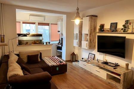 Cozy Art Apartment