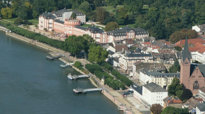 Luftbild Biebrich am Rheinufer