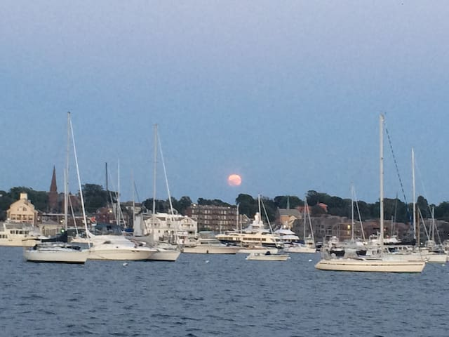 Experience Newport from the Harbor on a Catamaran - Newport - Barco