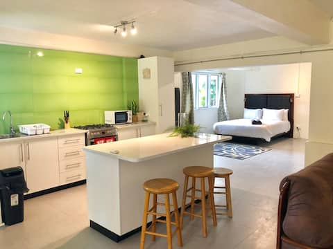 2 Bedroom Apartment with Pool - Williamson House