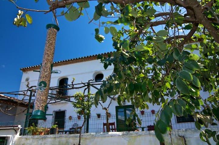 Chic Spanish villa in Jimena  - San Pablo de Buceite