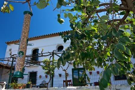 Chic Spanish villa in Jimena  - Haus