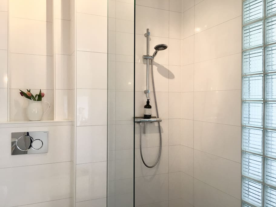 Very clean bathroom, with a shower, toilet, sink, heating. Shampoo, conditioner, soap and towels are included.