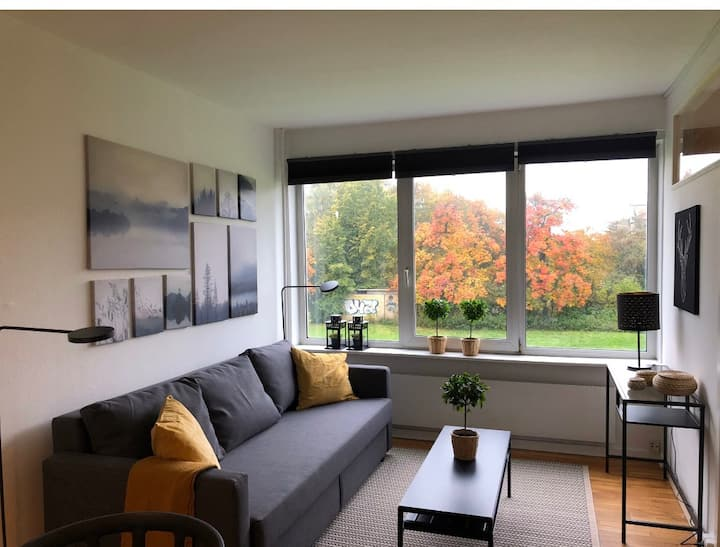 t31a1,3bedroom apartment 11 km from central CPH