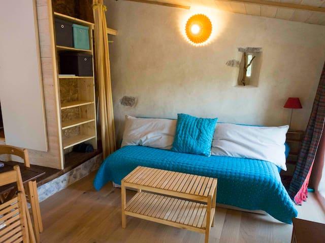 Espace salon / chambre avec canapé-lit confortable et rangements Living and sleeping space with a comfortable convertible.