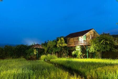 Premium Elevated Cottage at Koomankolly