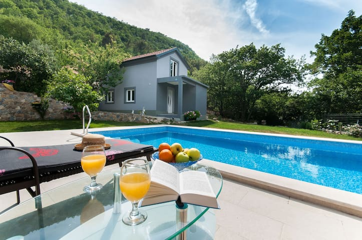 NEW LUXURY HOUSE WITH POOL