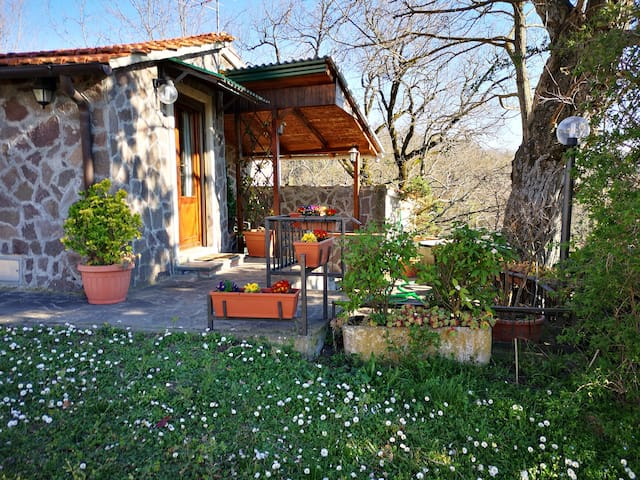 Airbnb Gattaia Vacation Rentals Places To Stay