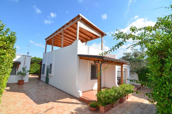 BO035 Villa Ioia - Manduria - House