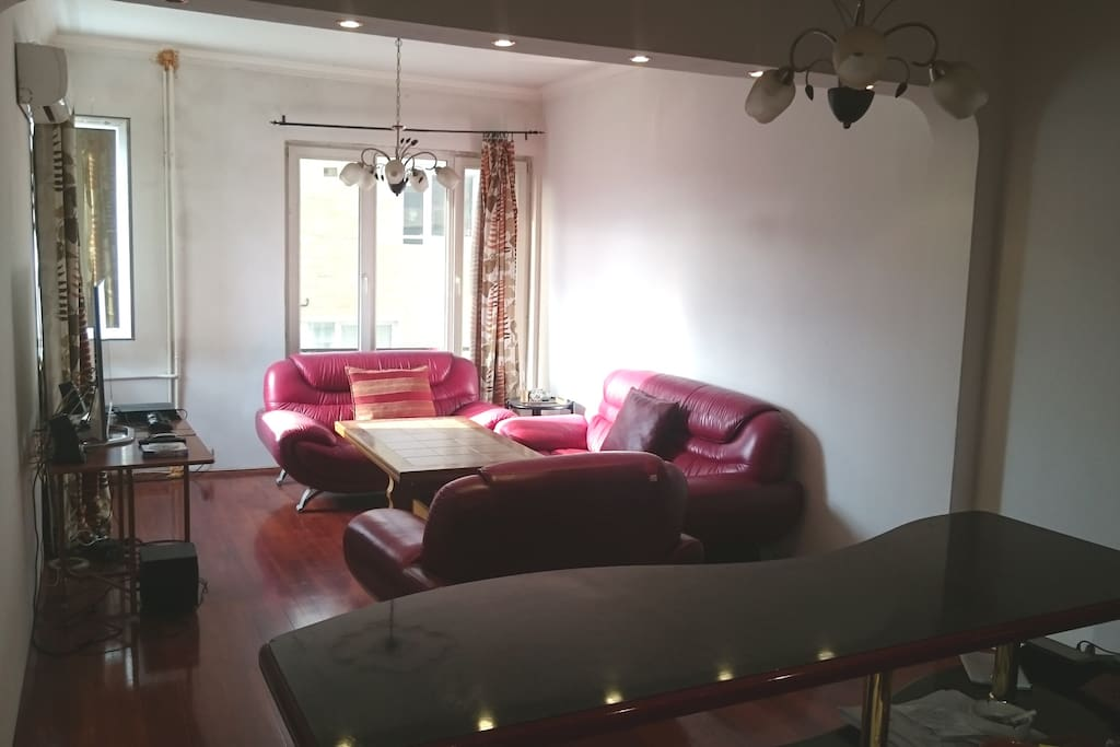 Spacious and well furnished living room