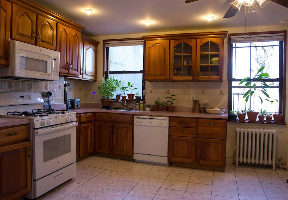 You'll find the shared kitchen has all the essential appliances and cookware, plus a lot of plant life!