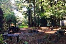 Upper campfire