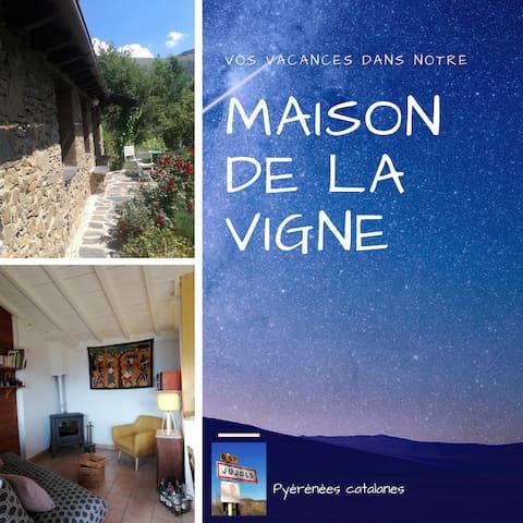 Maison de la Vigne à Jujols (face au Mont Canigou)