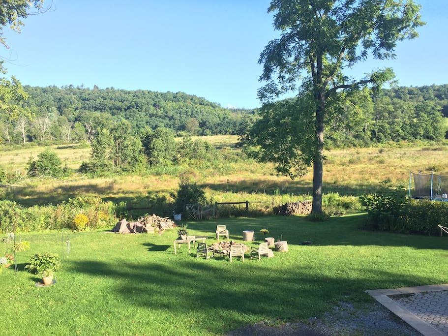 Beautiful Backyard View
