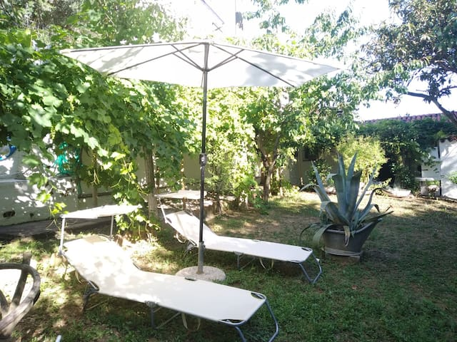 Chill in the garden under the shade
