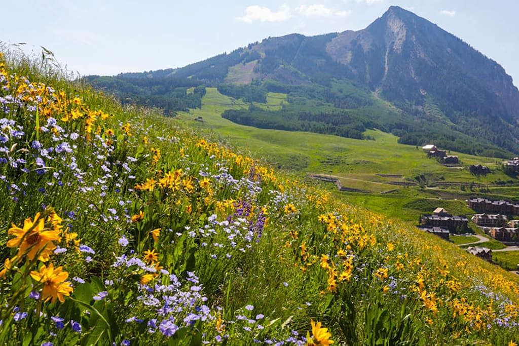 beautiful crested butte in summer