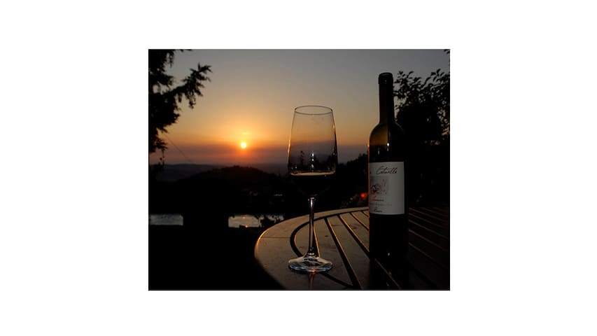 MERLOT SUNSET Rm#2: SOLO Traveller or 1-2-3 kids