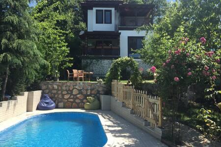 Sapanca Işıklı Bahçe Villa Şömine Barbekü ve Havuz