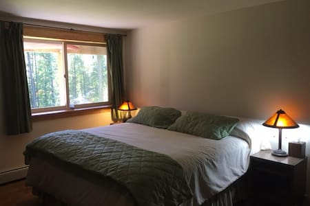 Mountain Chalet Apartment - Stowe - Daire