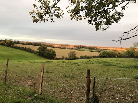Farm stay in Idyllic Hampshire Countryside.