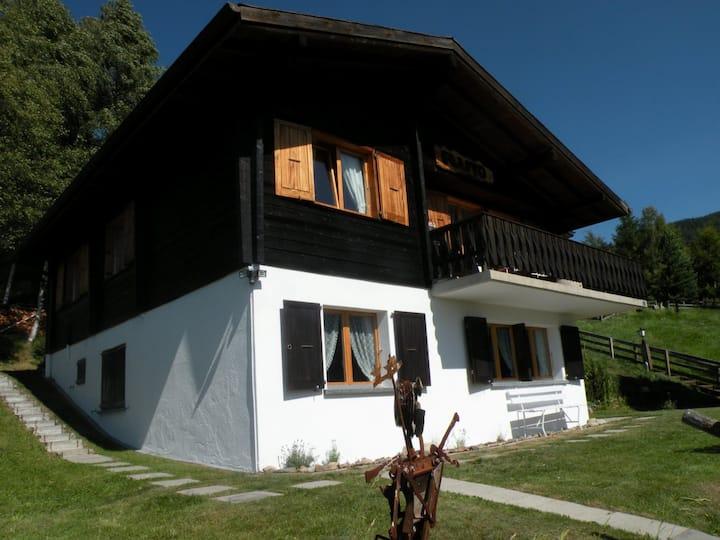 Mountain Home One