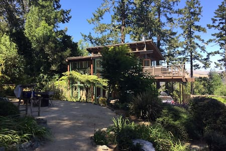 Zoe's Treehouse - Luxury Nestled in Nature - Inverness - House