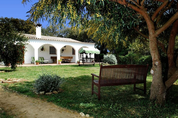 Relaxed & private villa & pool on laid-back finca - Vejer de la Frontera - Villa