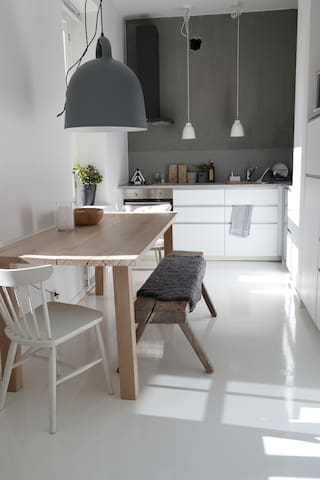 Kitchen  with large dinner table
