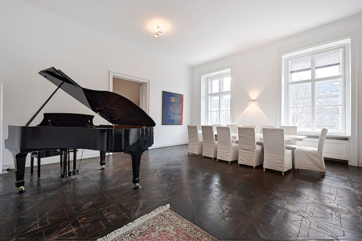 3000 sqft - Huge Luxury Apartment in Vienna
