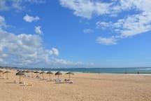 Meia Praia Beach
