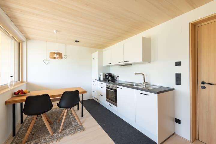Küche mit Sitzmöglichkeit, Kühlschrank, Herd, Backrohr, Geschirrspüler, TV mit Sat