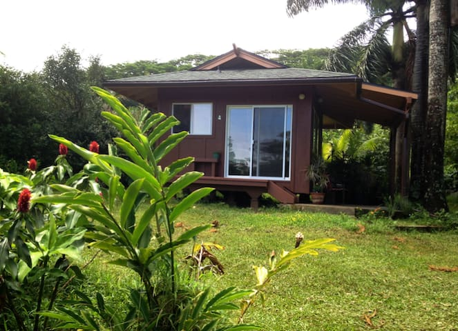 Tropical Cabin Retreat