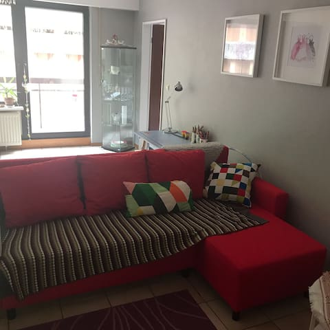 Cozy apartment near by the city centre