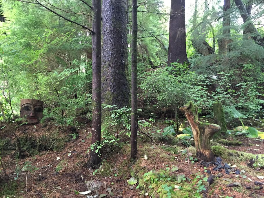 Your own secluded piece of the Tongass rainforest