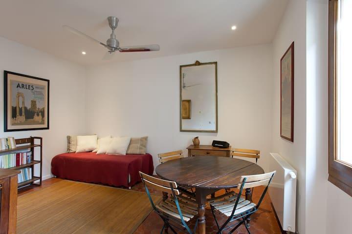 """""""Maison Saint-Césaire"""" Duplex Arlésien"""