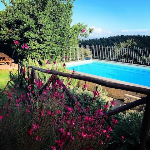 Apartament D for 6 pers. pool/garden (LTN0074)