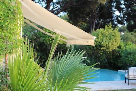 Wonderful French Riviera Villa