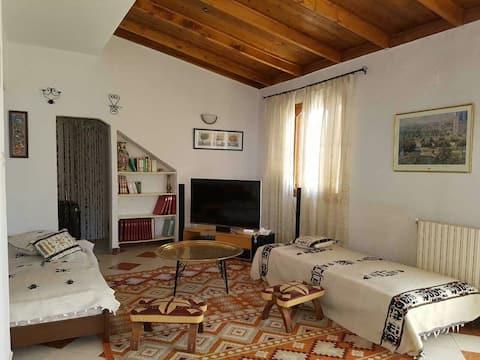 Vue d'exception+grand appartement sur baie d'Alger