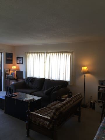 1 Bedroom Apt w Queen Bed and Couch