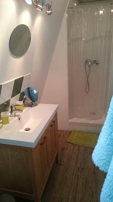 salle de douche indépendante, avec toilette et fenêtre