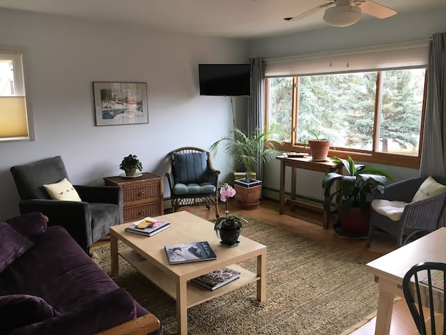 Lovely, quiet & private apartment!! - Carbondale - Apartment