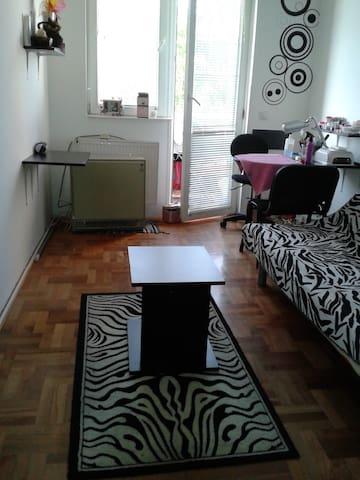 Spacious room near city center - Niš - Apartamento