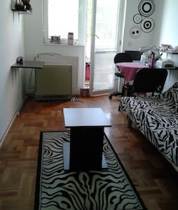 Spacious room near city center - Niš - Apartmen