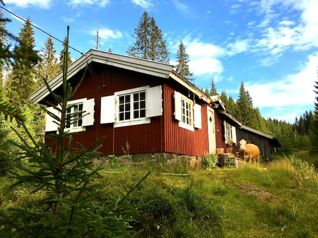 Romantic cabin in the forest, near Oslo. - Bærum - Srub
